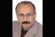 سلطان احمد جلایری* / محمد علی حسینی