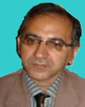 alirza zihagh